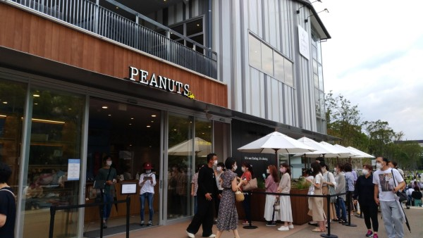 ピーナッツカフェの混み具合の参考画像