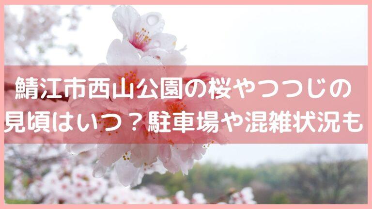 鯖江市西山公園の桜やつつじの見頃はいつ?駐車場や混雑状況も紹介!イメージ画像