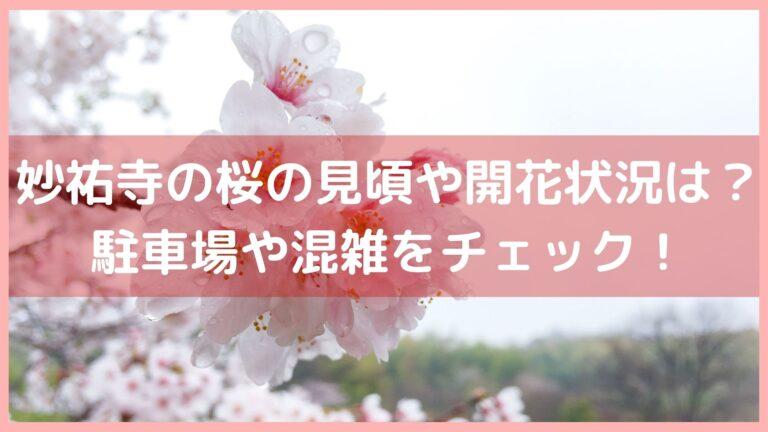 妙祐寺の桜の見頃や開花状況は?駐車場や混雑をチェック!イメージ画像