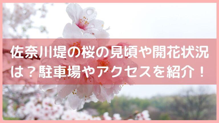 佐奈川堤の桜や菜の花の見頃や開花状況は?駐車場やアクセスを紹介!イメージ画像