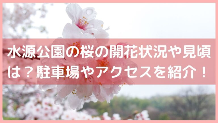 水源公園の桜の開花状況や見頃は?駐車場やアクセスを紹介!イメージ画像