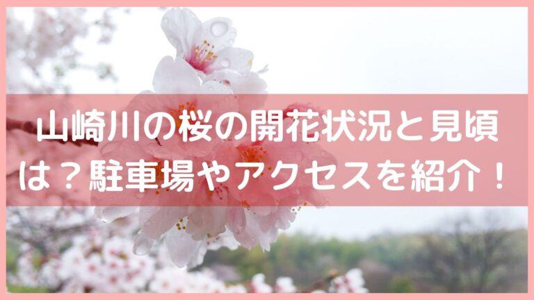 山崎川の桜の開花状況と見頃は?駐車場や最寄駅アクセスを紹介!イメージ画像
